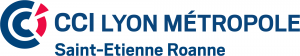 Logo CCI Lyon Métropole